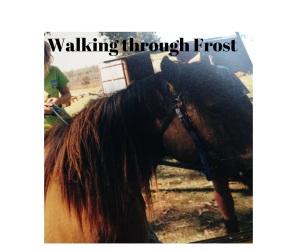 Walking through Frost